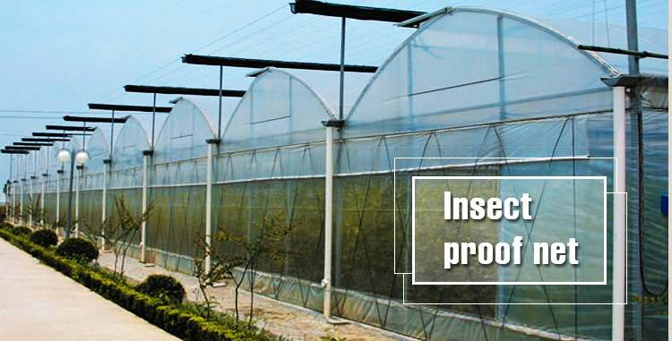 The Role of Greenhouse Insect-proof Nets