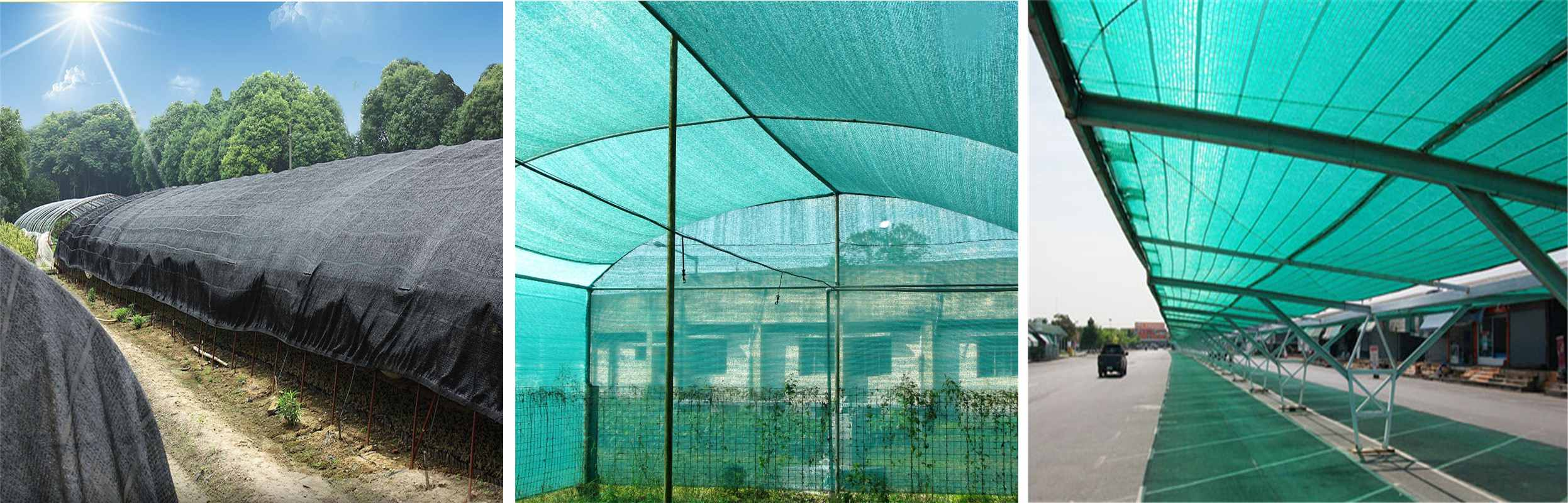 The advantages and uses of shade net are introduced