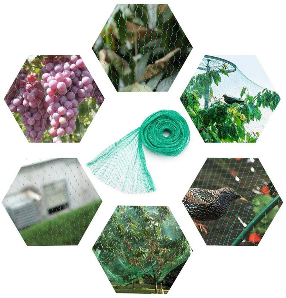 What is the Extruded Anti Bird Net?cid=191