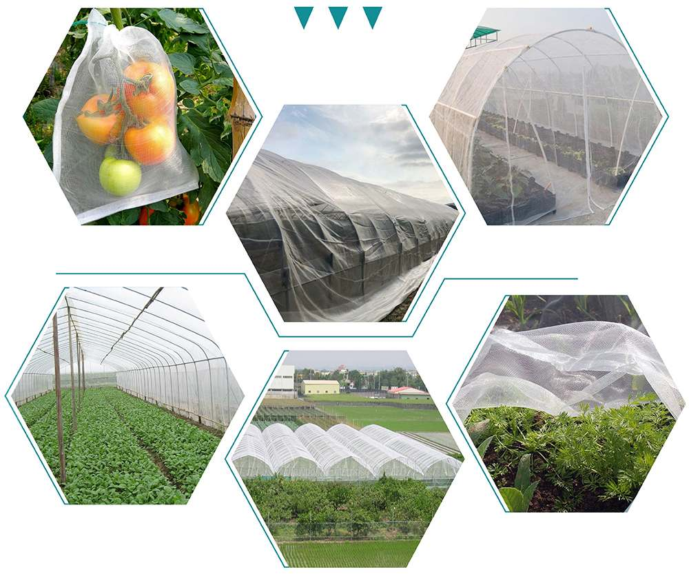 Anti Insect Net--making your farm say Bye bye to Biocide