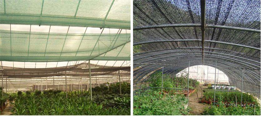 How to use shade net correctly?cid=191