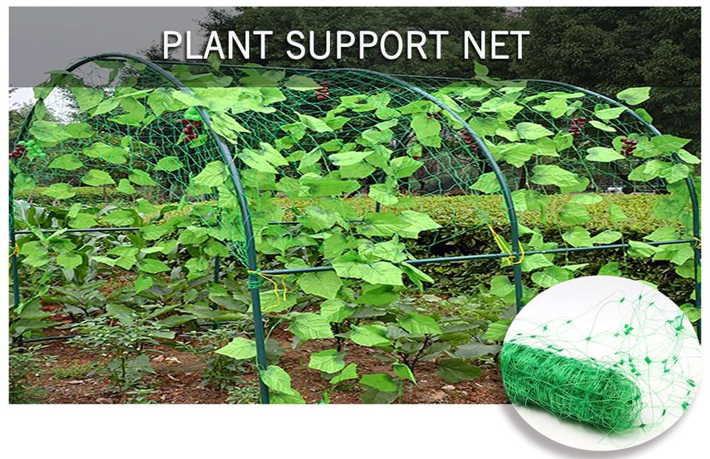 Plant Support Net.jpg